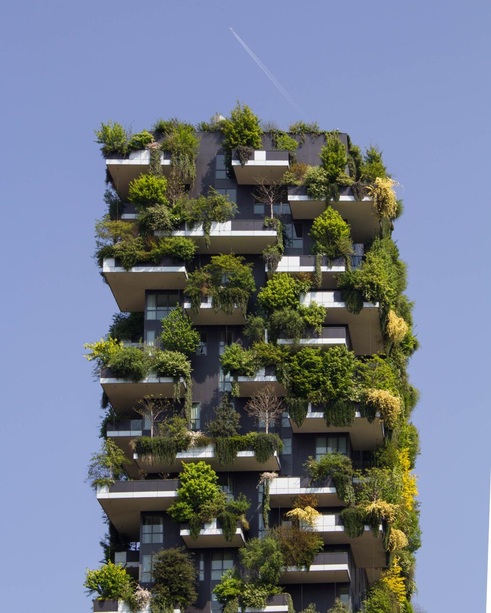 https://www.ccifrance-allemagne.fr/wp-content/uploads/2021/02/batiment_ecologie_plante.jpg