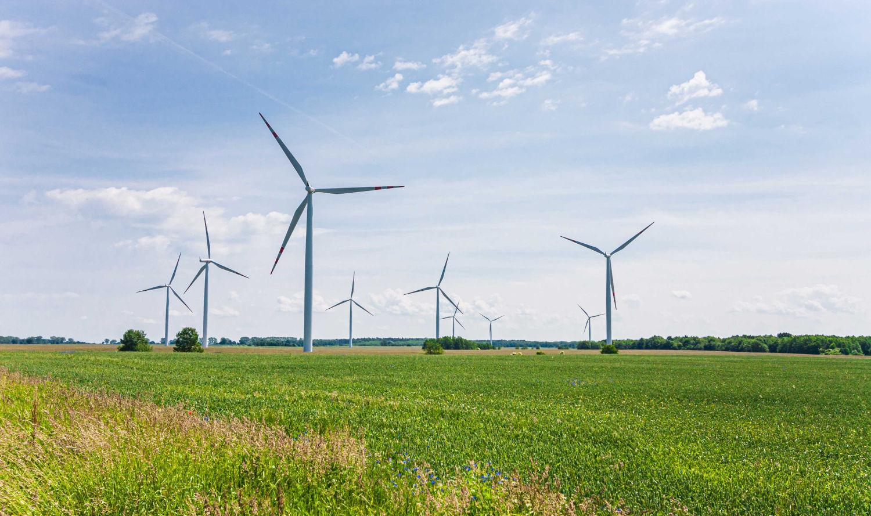 champ d'éolienne créant de l'énergie verte et durable dans le secteur des technologies de l'environnement allemand
